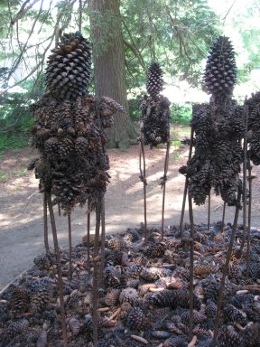 Decordova_cones